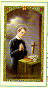 Saint Gerard Motherhood Laminated Prayer Card