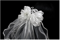 Ribbon and Bow White First Communion Veil