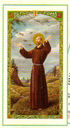 Saint Francis Novena Laminated Prayer Card