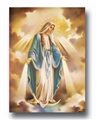 Our Lady of Grace Color Poster