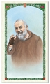 Saint Padre Pio Laminated Prayer card