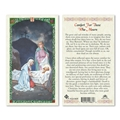Comfort for Those Who Mourn Laminated Holy Card