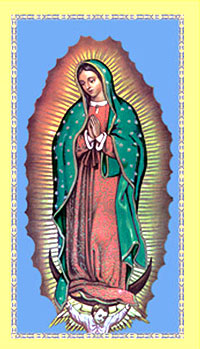 Our Lady of Guadalupe Holy Card Pack of 100